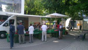 marktmurten_92